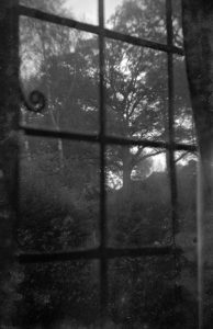 A vintage negative view from looking out of a window, found in an old contact printing frame