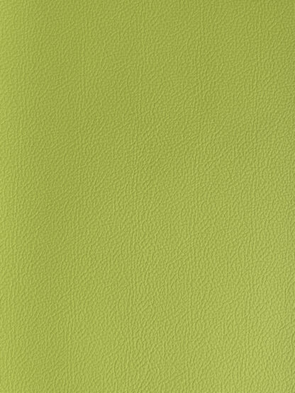 Milly-Cameras-camera-recovering-leather-skins-lime-green