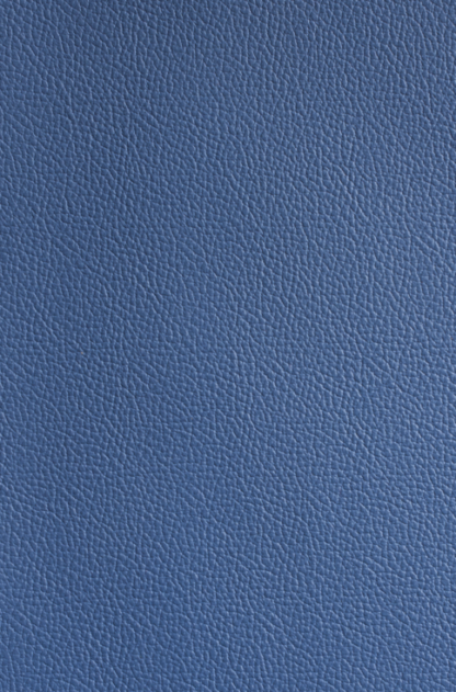 Yale Blue Leather