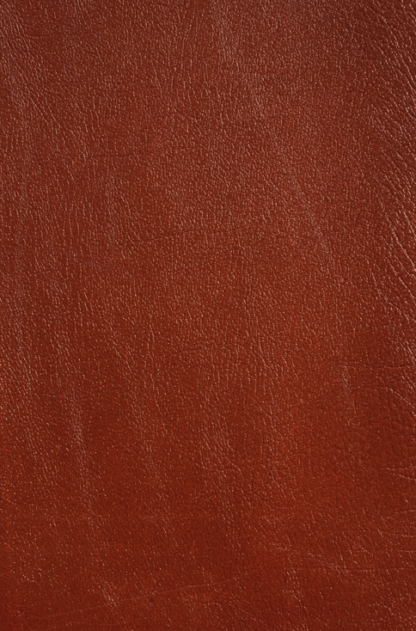 Chestnut Camera Leather
