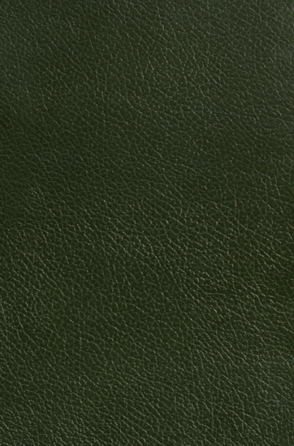 British Racing Green Leather
